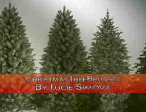真实的圣诞树、松树photoshop笔刷素材下载