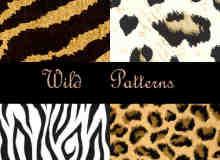 豹纹、条纹状背景PS填充图案素材下载