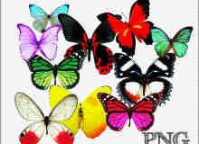 漂亮的七彩蝴蝶素材【美图秀秀笔刷包】