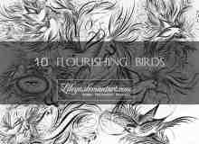 漂亮的艺术爱情鸟Photoshop笔刷素材下载