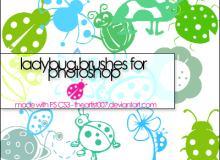 童趣手绘七星瓢虫图案Photoshop笔刷下载