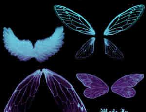 天使翅膀、昆虫翅膀Photoshop笔刷