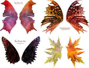 奇妙斑斓蝴蝶PNG透明图片素材【美图秀秀素材包】