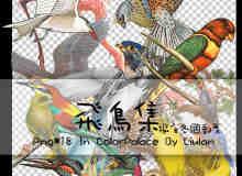 卡通鸟类图片素材【美图秀秀素材包】