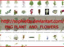 49个鲜花、树木、玫瑰、草木等透明图片素材【美图秀秀素材包】