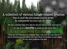 树木、草地Photoshop笔刷素材