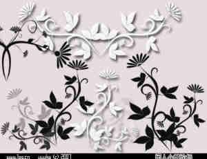 典雅鲜花图案花纹素材Photoshop笔刷