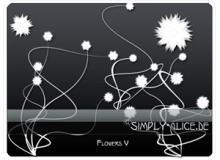 漂亮的植物花纹照片美图背景边框饰品PS笔刷 #.9