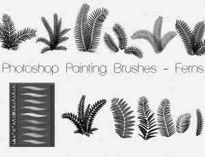 自由式手绘蕨类植物Photoshop笔刷素材