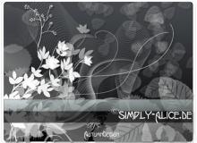漂亮的植物花纹照片美图背景边框饰品PS笔刷 #.15