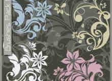 漂亮的植物花纹照片美图背景边框饰品PS笔刷 #.24