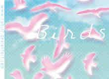 飞翔的海鸥剪影美图PS笔刷素材