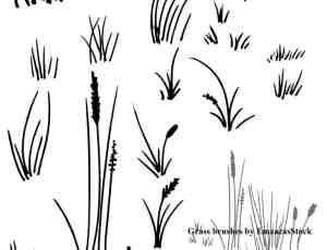 手绘青草、野草、杂草PS笔刷下载