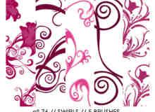 漂亮的植物花纹照片美图背景边框饰品PS笔刷 #.22