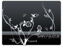 漂亮的植物花纹照片美图背景边框饰品PS笔刷 #.11