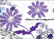 漂亮的植物花纹照片美图背景边框饰品PS笔刷 #.39