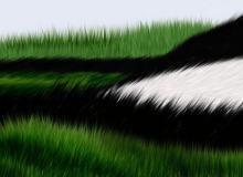细腻的CG青草、绒毛毛发效果Photoshop笔刷素材