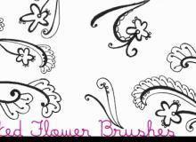 漂亮的植物花纹照片美图背景边框饰品PS笔刷 #.42