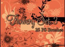 漂亮的植物花纹照片美图背景边框饰品PS笔刷 #.48