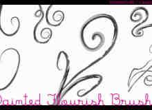 漂亮的植物花纹照片美图背景边框饰品PS笔刷 #.58