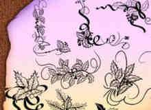 圣诞节叶子植物花纹图案Photoshop笔刷