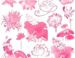 11个莲花图案素材PS笔刷打包下载
