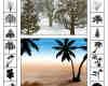 椰子树、树木剪影photoshop自定义形状素材