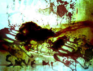 真实血液痕迹、血污纹理Photoshop笔刷