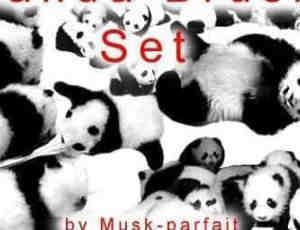 可爱国宝大熊猫PS笔刷下载