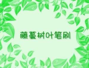 藤蔓树叶Photoshop笔刷