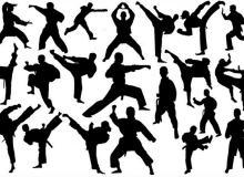 跆拳道人物剪影Photoshop笔刷素材