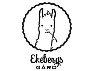 14张搞笑的羊驼造型的logo标志设计参考