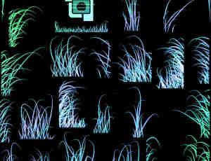手绘高品质小草、青草、草丛Photoshop笔刷素材