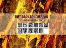 老旧的树皮纹理、大树表皮Photoshop笔刷素材