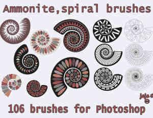 漂亮的蜗牛壳花纹图案PS笔刷素材