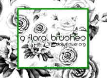 9中鲜艳的手绘玫瑰花图案PS笔刷