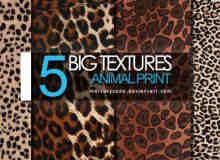 5种真实斑点豹纹皮草纹理Photoshop布艺笔刷(图片素材)
