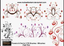 优雅的植物艺术花纹PS装饰笔刷