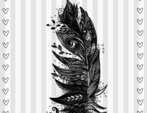 漂亮的手绘羽毛纹饰Photoshop装饰笔刷