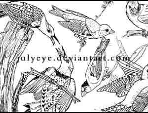 手绘小鸟图案PS笔刷下载