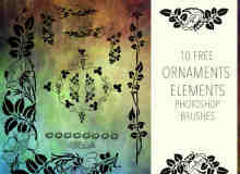 漂亮的欧式贵族植物花纹图案PS笔刷下载