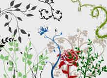 漂亮的艺术植物花纹图案Photoshop笔刷素材下载