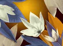 7种鲜花图形PS笔刷下载