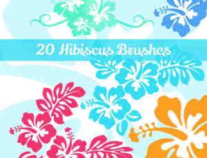 20种美丽的芙蓉花花纹、印花图案PS笔刷下载