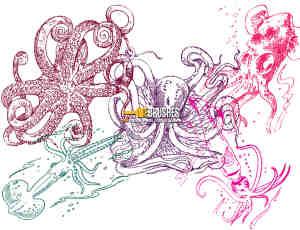手绘鱿鱼、章鱼海怪图像Photoshop笔刷下载