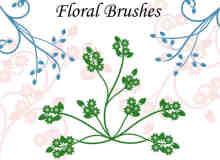 艺术植物花纹图案Photoshop印花笔刷下载