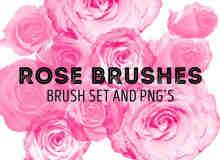 玫瑰花花朵Photoshop鲜花笔刷