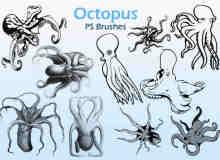 20种章鱼图形PS笔刷下载