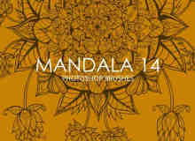 漂亮非凡的曼荼罗植物花纹、华丽印花图案PS笔刷下载