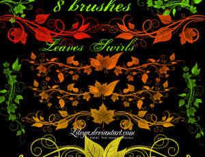 漂亮的枫叶、植物叶子花纹分割栏、叶子纹饰边框图案PS笔刷素材